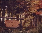 SIGN_AT_THE_ENTRANCE_TO_THE_STATE_UNIVERSITY_OF_NEW_YORK_COLLEGE_OF_ENVIRONMENTAL_SCIENCE_AND_FORESTRY_IN_THE..._-_NARA_-_554693.jpg