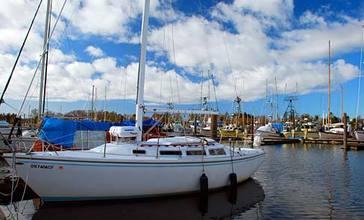 Warrenton_Marina__Clatsop_County__Oregon_scenic_images___clatDA0042a_.jpg