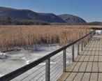 Constitution_Marsh_boardwalk_winter.jpg