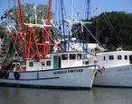 Shem_Creek_Boats.JPG
