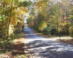 Fall_in_Kings_Ridge_Estates_in_Woodstock_GA.jpg