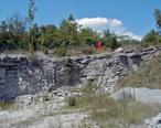 Dundee_Limestone__Middle_Devonian__Medusa_North-North_Quarry__Sylvania__Ohio__USA_.jpg