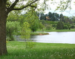 Dawes_Arboretum_-_DSC02895.JPG