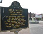 Boll_Weevil_Monument_Alabama_Historical_Marker.JPG