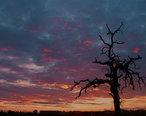 Visalia_Sunset.jpg