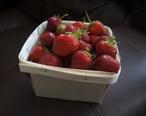Beleville_Area_Strawberries_1.jpg