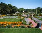 Clemens_Gardens.JPG