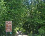 Rochester_Michigan_Paint_Creek_Trail.JPG