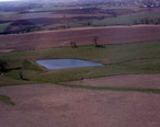 Farmland_and_pond__Marion_Cty__IA.jpg