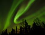 The_northern_lights_just_north_of_Fairbanks__Alaska.jpg