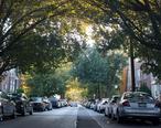 Ditmars_Residential_Neighborhood_in_Fall_of_2012.jpg