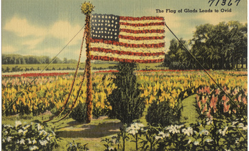 The_flag_of_Glads_leads_to_Ovid__the_Third_Annual_Gladiolus_Festival_will_be_held_at_Ovid_August_30-31__and_September_1__1941._Visit_the_M._E._Church_for_the_Flower_Show..jpg
