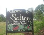 Saline__LA__welcome_sign_IMG_0714.JPG