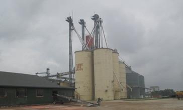 Tubbs_Rice_Grain__Pioneer__LA_IMG_7344.JPG