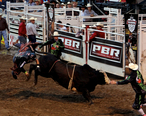Rodeo_of_the_Ozarks_001.jpg
