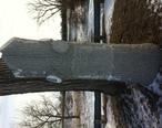 Lone_Tree_December_25_2012-2.JPG