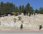Lafayette_hillside_memorial--Panoramic.jpg