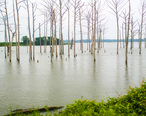 Poverty_Point_Reservoir__2013__IMG_7439.JPG