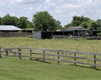 Corral_at_Washington-on-the-Brazos__TX_IMG_9312.JPG