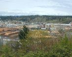 Simpson_lumber-Shelton_Washington.jpg