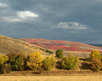 HTA_fields_looking_south_with_red_and_yellow_leaves.jpg