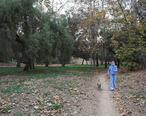 Hiltscher-Park-Fullerton.jpg