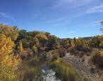 2015-10-30_13_07_51_View_south_up_the_Carson_River_from_Nevada_State_Route_822__Dayton_Valley_Road__in_Dayton__Nevada.jpg