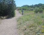Trail_at_Rock_Park__Castle_Rock__CO_IMG_5207.JPG