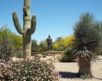 Paradise_Valley-Barry_Goldwater_Memorial-1.JPG
