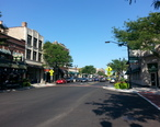 Madison_Street__Forest_Park.jpg