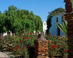 Garden_and_Pepper_Tree__Mission_San_Luis_Rey__CA_9-16__30824095672___cropped_.jpg