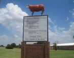 Hereford__TX__welcome_sign_IMG_4834.JPG