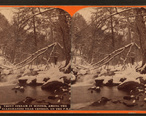 Trout_stream_in_winter__among_the_Alleghenies_near_Cresson__on_the_P._R._R__by_R._A._Bonine.jpg