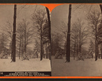 Winter_at_Cresson__summer_resort__on_the_P._R._R._among_the_wilds_of_the_Alleghenies__by_R._A._Bonine_8.jpg