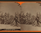 Winter_at_Cresson__summer_resort__on_the_P._R._R._among_the_wilds_of_the_Alleghenies__by_R._A._Bonine_4.jpg
