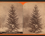 Winter_at_Cresson__summer_resort__on_the_P._R._R._among_the_wilds_of_the_Alleghenies__by_R._A._Bonine_2.jpg