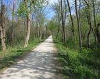 Winfield_IL_Prairie_Path_Elgin_Branch.JPG