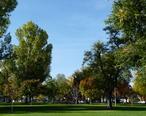 Main_Park_2_-_Windsor_CO.jpg