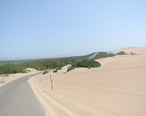 Guadalupe_Dunes_County_Park_road.JPG
