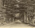 View_of_Meadow_Street__Winsted__CT.jpg