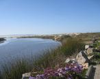 Pismo_Beach_Creek_taken_at_Addie_Vacation_Townhomes_10x72.jpg