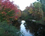 Warner_River_October_2007_New_Hampshire.jpg