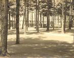 Pine_Grove_Springs_Hotel__Spofford_Lake__Chesterfield__NH.jpg