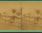 Horse_pulling_cart__Norway__Maine__by_W._H._Green.jpg
