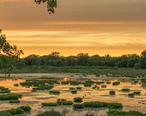 Utica_Marsh_at_Sunset.jpg