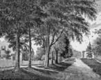 RidgefieldCTMainSt1875.jpg