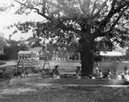 Public_Playgrounds_in_East_Orange__New_Jersey__1908_.jpeg