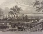 Buffalo_1813.jpg