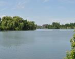 Delaware_Park_lake.jpg
