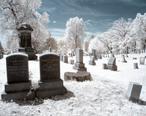 RocSnow_Infrared_Cemetery__17836702701_.jpg